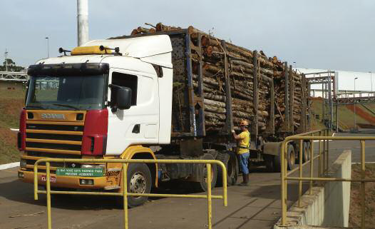 A truck load of eucalyptus logs is brought in to the Itapetininga plant, from plantations up to 70km away, for its MDP line